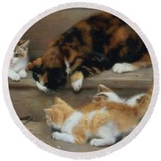 Cat And Kittens Chasing A Mouse   Round Beach Towel by Rosa Jameson