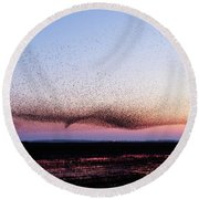 Chaos In Motion - Bird Of Many Birds Round Beach Towel by Roeselien Raimond
