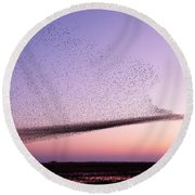 Chaos In Motion - Starling Murmuration Round Beach Towel by Roeselien Raimond