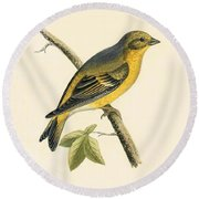 Citril Finch Round Beach Towel by English School