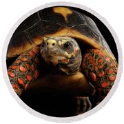 Close-up Of Red-footed Tortoises, Chelonoidis Carbonaria, Isolated Black Background Round Beach Towel by Sergey Taran