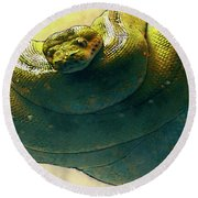 Coiled Round Beach Towel by Jack Zulli