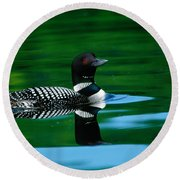 Common Loon In Water, Michigan, Usa Round Beach Towel by Panoramic Images