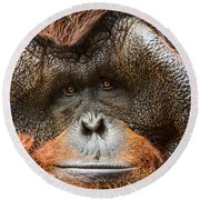 Deep In Thought Round Beach Towel by Jamie Pham