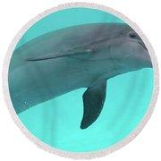 Dolphin Round Beach Towel by Sandy Keeton