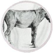 Donkey Round Beach Towel by George Stubbs