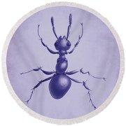 Drawn Purple Ant Round Beach Towel by Boriana Giormova