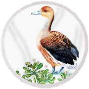 Duck And Daisies Round Beach Towel by Sandra Moore