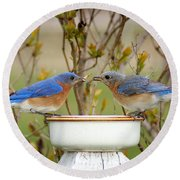 Early Bird Breakfast For Two Round Beach Towel by Bill Pevlor