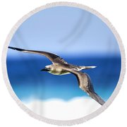 Eye Contact Round Beach Towel by Sean Davey