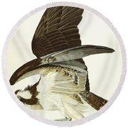 Fish Hawk Round Beach Towel by John James Audubon