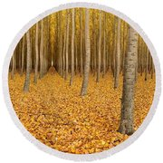 Forest Corridors Round Beach Towel by Adele Buttolph