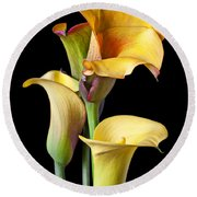 Four Calla Lilies Round Beach Towel by Garry Gay