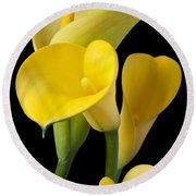 Four Yellow Calla Lilies Round Beach Towel by Garry Gay