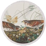 Fox Sparrow Round Beach Towel by John James Audubon
