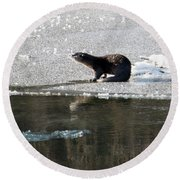 Frosty River Otter  Round Beach Towel by Mike Dawson