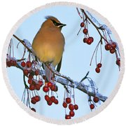 Frozen Dinner  Round Beach Towel by Tony Beck