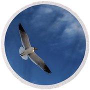 Glider Round Beach Towel by Don Spenner