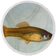 Go Fish Round Beach Towel by James W Johnson