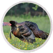 Gobble Gobble Round Beach Towel by Todd Hostetter