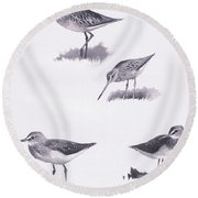 Godwits And Green Sandpipers Round Beach Towel by Archibald Thorburn