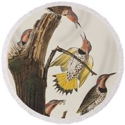 Golden-winged Woodpecker Round Beach Towel by John James Audubon