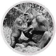 Gorillas Playing Round Beach Towel by Tom McHugh