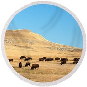Great Plains Buffalo Round Beach Towel by Todd Klassy