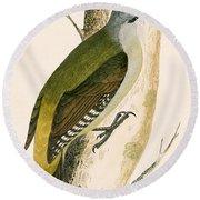 Grey Woodpecker Round Beach Towel by English School