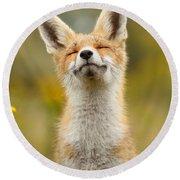 Happy Fox Round Beach Towel by Roeselien Raimond