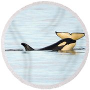 Heads Or Tails Round Beach Towel by Mike Dawson