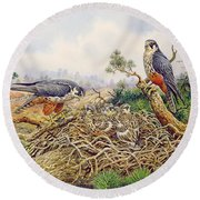 Hobbys At Their Nest Round Beach Towel by Carl Donner