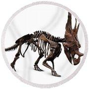 Horned Dinosaur Skeleton Round Beach Towel by Oleksiy Maksymenko