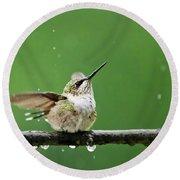 Hummingbird In The Rain Round Beach Towel by Christina Rollo