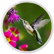 Hummingbird With Flower Round Beach Towel by Christina Rollo