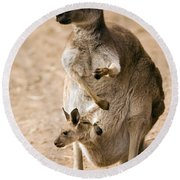 In  Mother's Care Round Beach Towel by Mike  Dawson