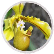 Intimate Orchid 5 - Sharon Cummings Round Beach Towel by Sharon Cummings