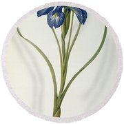 Iris Xyphioides Round Beach Towel by Pierre Joseph Redoute