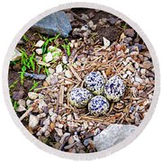Killdeer Nest Round Beach Towel by Cricket Hackmann