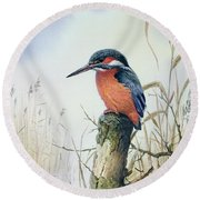 Kingfisher Round Beach Towel by Carl Donner