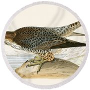 Lanner Falcon Round Beach Towel by English School