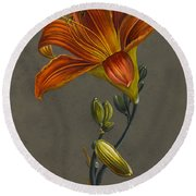 Lily Round Beach Towel by Louise D'Orleans