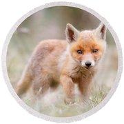 Little Fox Kit, Big World Round Beach Towel by Roeselien Raimond