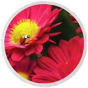 Little Red Ladybug Round Beach Towel by Christina Rollo