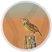 Little Songbird Round Beach Towel by HH Photography of Florida
