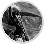 Looking Good B/w Round Beach Towel by Marvin Spates