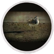 Looking Pretty Round Beach Towel by Marvin Spates