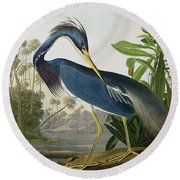 Louisiana Heron Round Beach Towel by John James Audubon