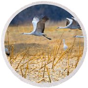 Low Level Flyby Round Beach Towel by Mike Dawson