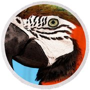 Macaw Bird - Rain Forest Royalty Round Beach Towel by Sharon Cummings